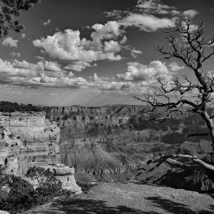 """Grand Slam Canyon"" - Steve Johnson"