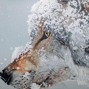 """Snow Wolf"" - Kelly Speros"