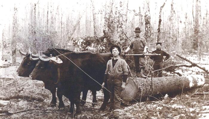 Chippewa Valley History
