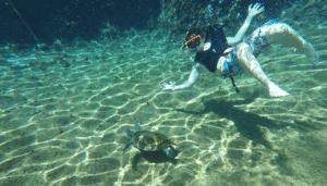 Underwater photo taken with GoPro camera.