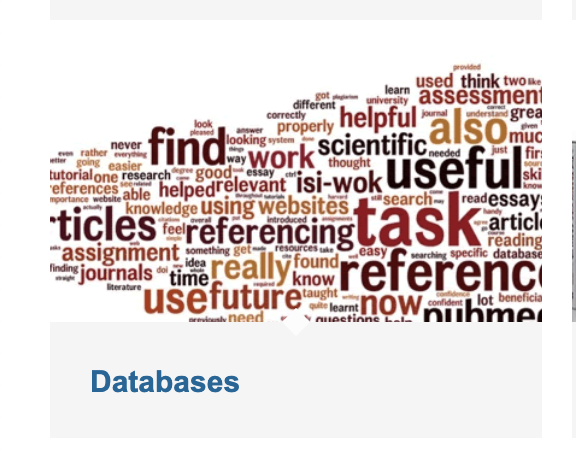 Databases box to access library's free database and language resources.